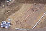 Baubegleitung Paretz